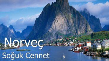 Norveç'ten Türkiye'ye Ev Eşyası Taşıma